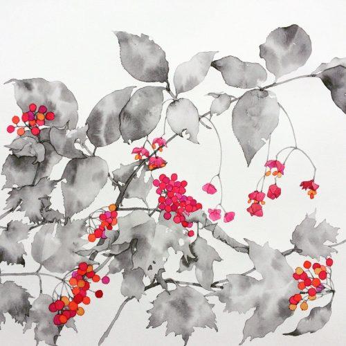 Kumi Tamura (1)-min